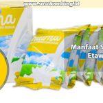 Manfaat Susu Kambing Etawa Naima