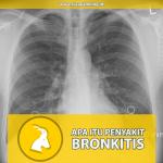 Apa itu Penyakit Bronkitis