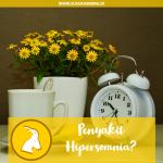 Cari Tau Yuk Penyakit Hipersomnia