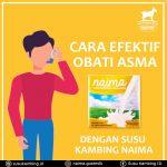 Cara Mengobati Asma Dengan Susu Kambing Etawa Naima
