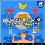 Cara Memperbaiki Metabolisme Tubuh
