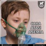 Cara Mengatasi Anemia Dengan Benar