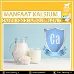 Manfaat Kalsium Bagi Tubuh