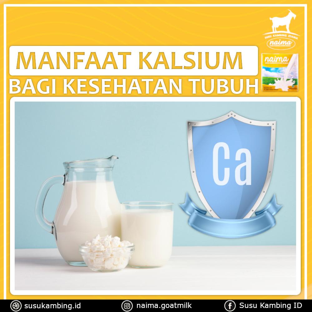 Manfaat Kalsium Bagi Tubuh - susukambing.id