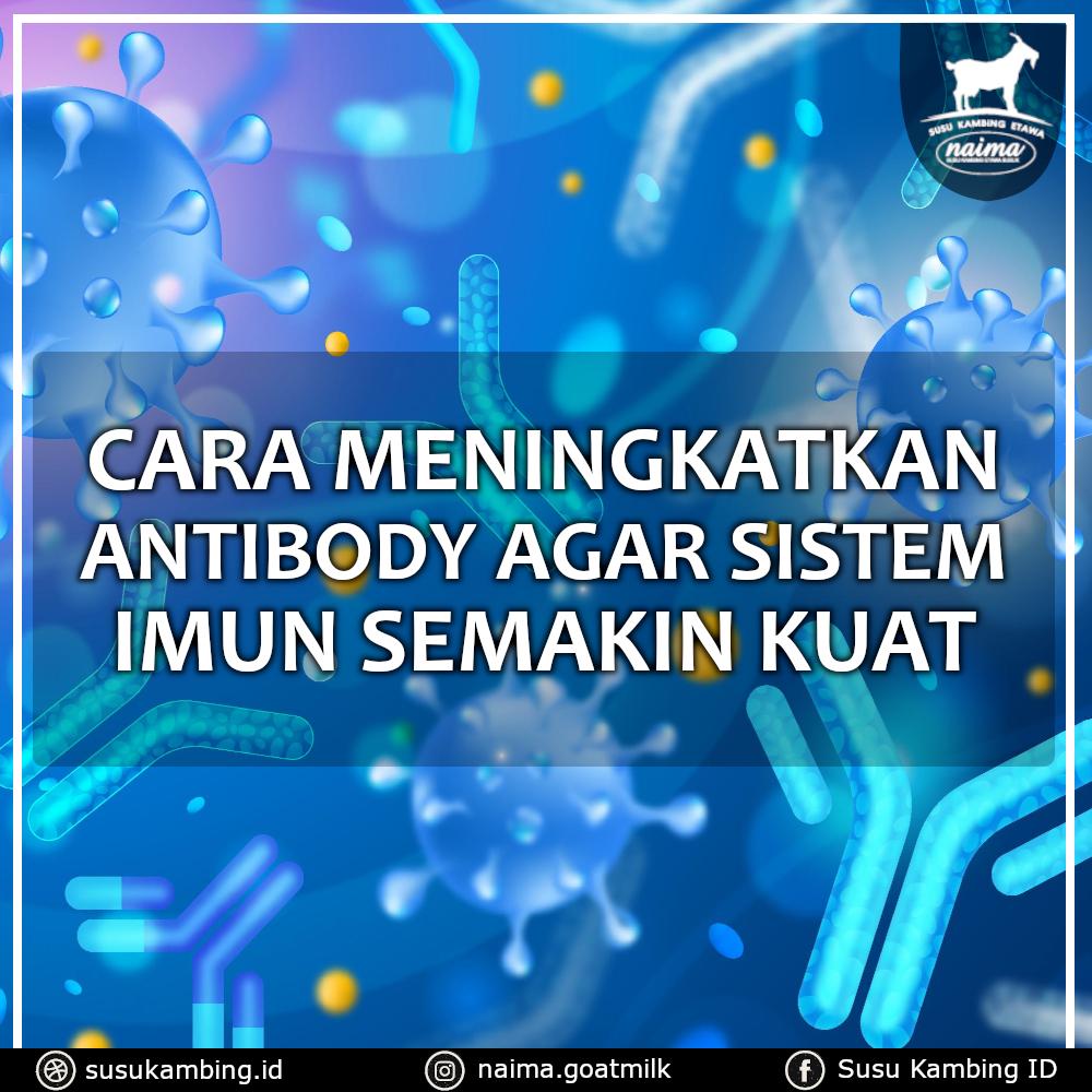 Cara Meningkatkan Antibodi - susukambing.id