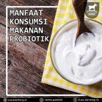 Manfaat Konsumsi Makanan Probiotik