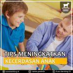 Tips Meningkatkan Kecerdasan Anak